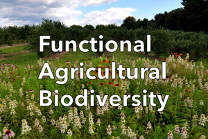 Functional ag biodiversity video