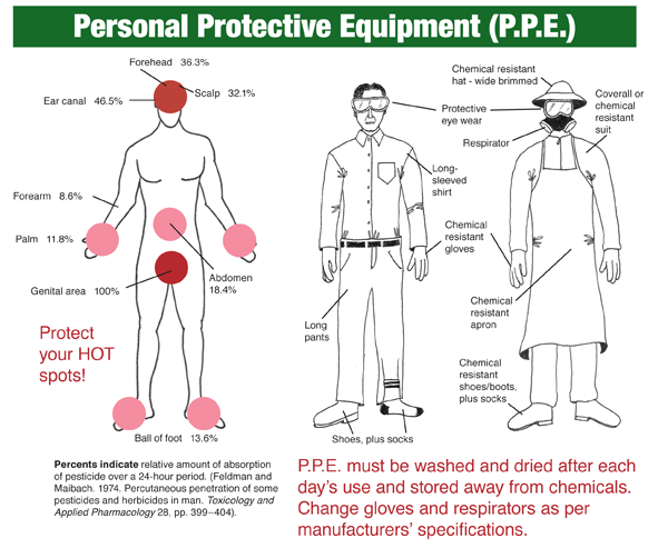 Personal protective equipment illustration