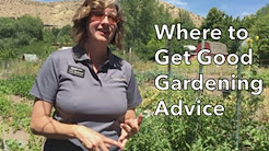 gardening advice video