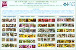 Plants for pollinators poster